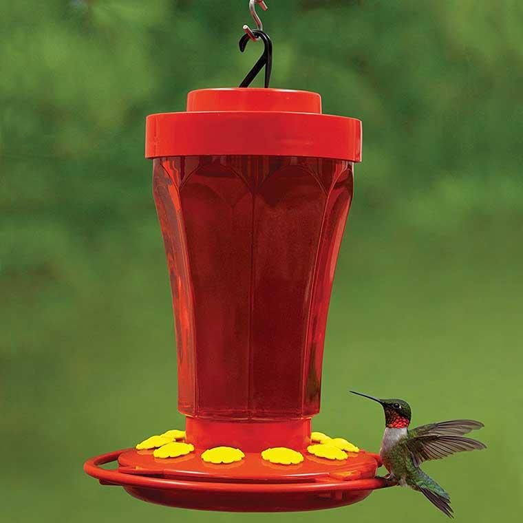 360 Degree Hummingbird Feeder