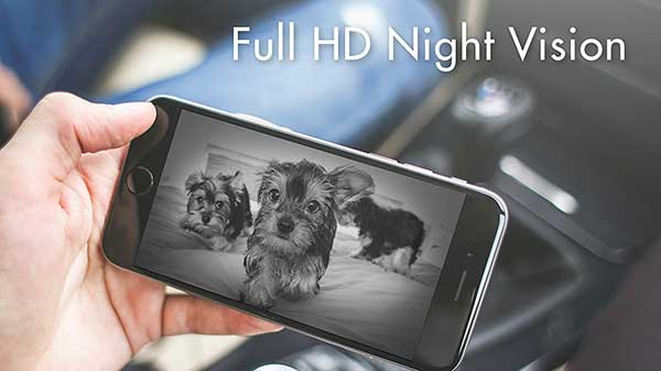 Treat Dog Camera with Night Vision