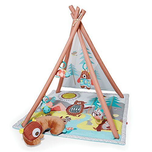 Camping Cubs Activity Gym and Playmat