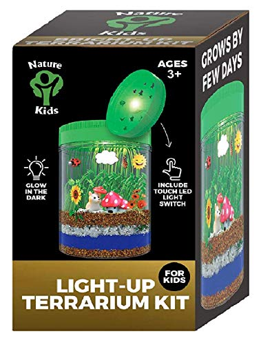 Light Up Terrarium Kit