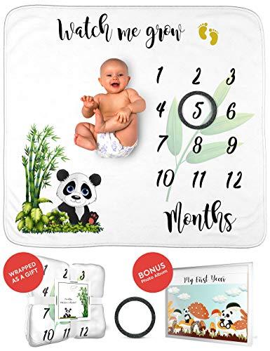 Monthly Baby Milestone Blanket