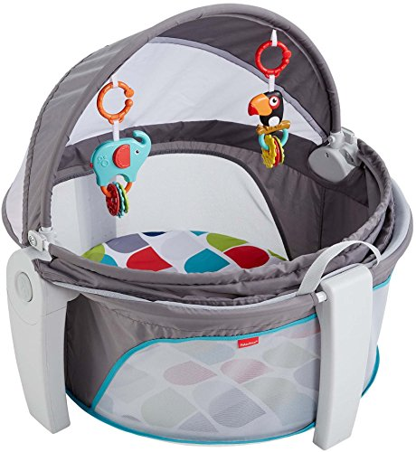 On the Go Baby Dome from Fisher Price