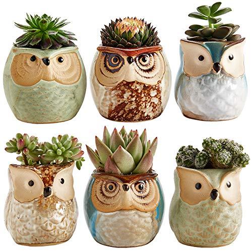 Owl Design Ceramic Succulent Pots
