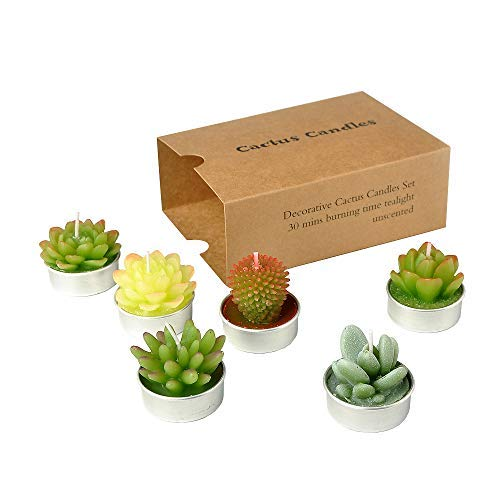 SanSeng Succulent Cactus Tealight Candles