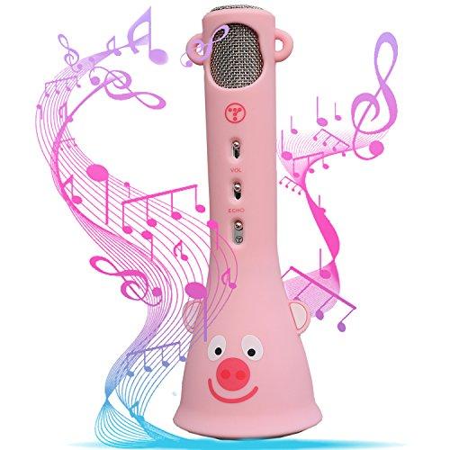 Wireless Bluetooth Karaoke Mic