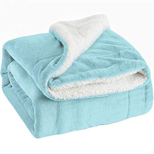 The World's Softest Blanket