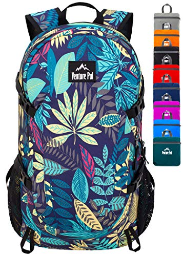 Venture Pal Hiking Pack