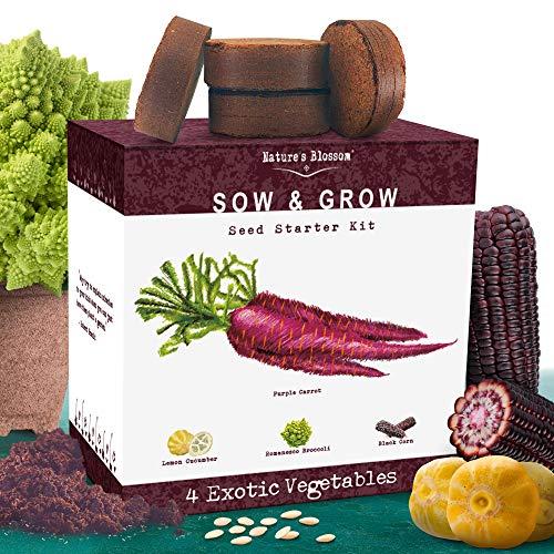 Exotic Vegetables Growing Kit
