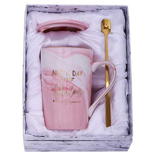 Not A Day Over Fabulous Birthday Mug