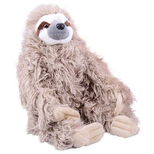 Stuffed Sloth