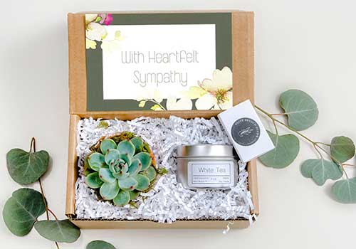 Succulent Sympathy Gift Box