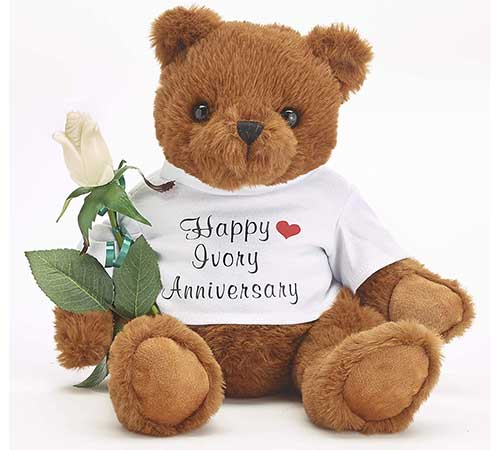 Happy Ivory Anniversary Teddy Bear