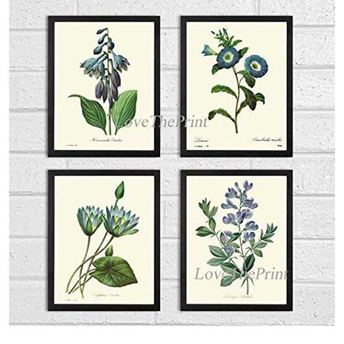 Botanical Set of Four Prints