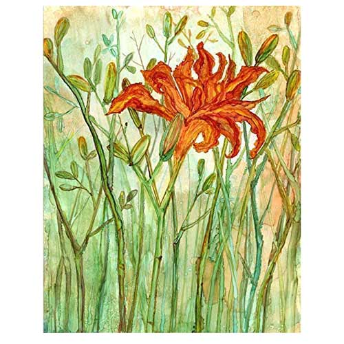 Orange Daylily Art Print