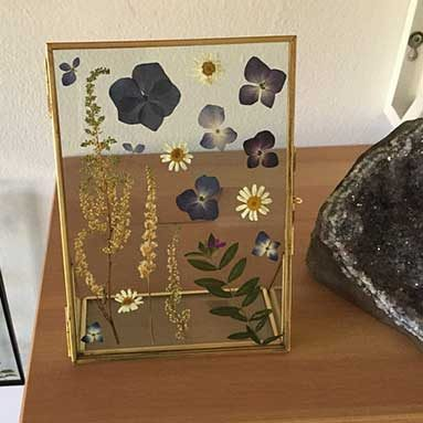 Pressed Flowers In Glass Frame